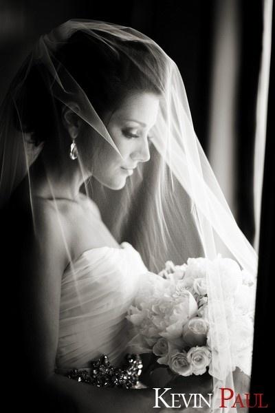 veil-flower-of-light